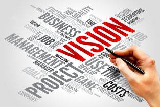 vision-313x209